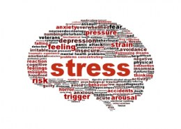 How do stress affect your health?