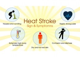 What causes heat stress?