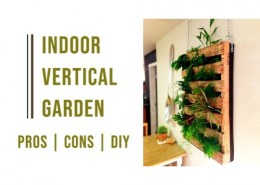 What are some Pros and Cons for Indoor Gardening?