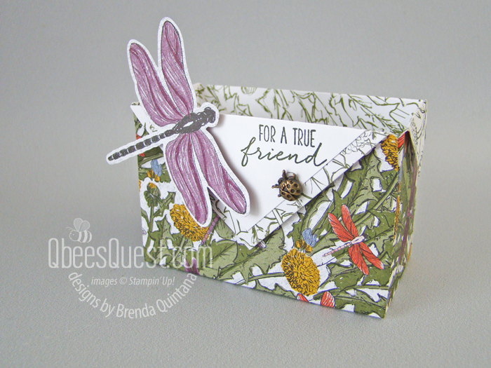 Stampin' Up Dragonfly Garden Diagonal Fold Box