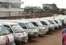 Peace Mass Transit buses
