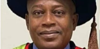 Olanrewaju Shitta-Bey appointed Professor in United States