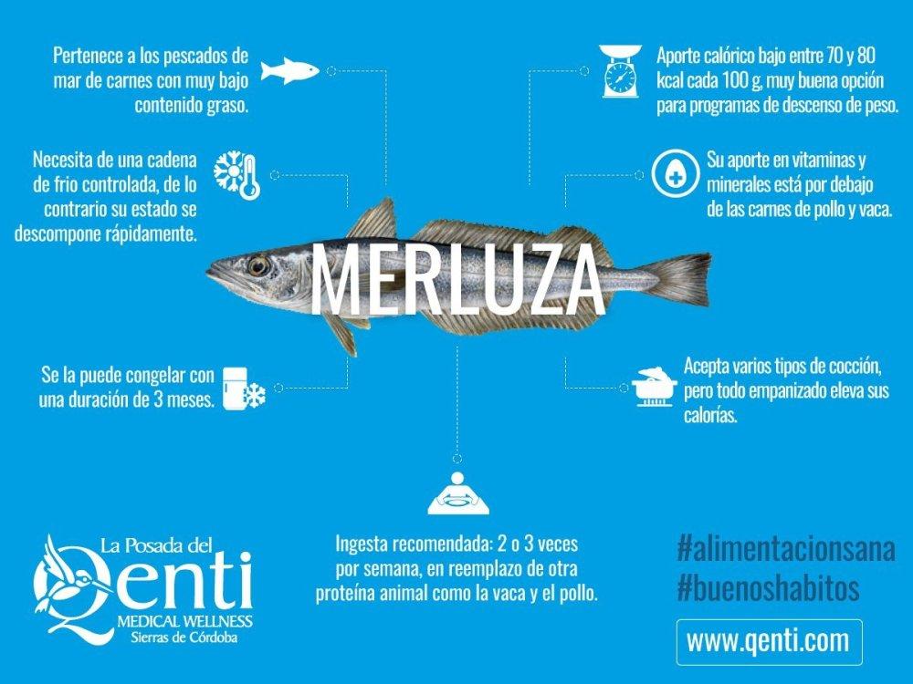 infografia-merluza