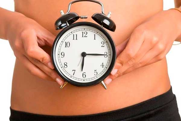 Metabolismo: un proceso vital