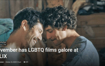 November has LGBTQ+ films galore at qFLIX