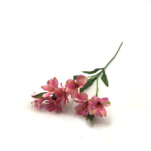 haste de astromelia rosa