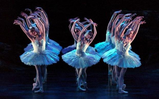 Swan Lake Russian Ballet Qingdao Grand Theatre