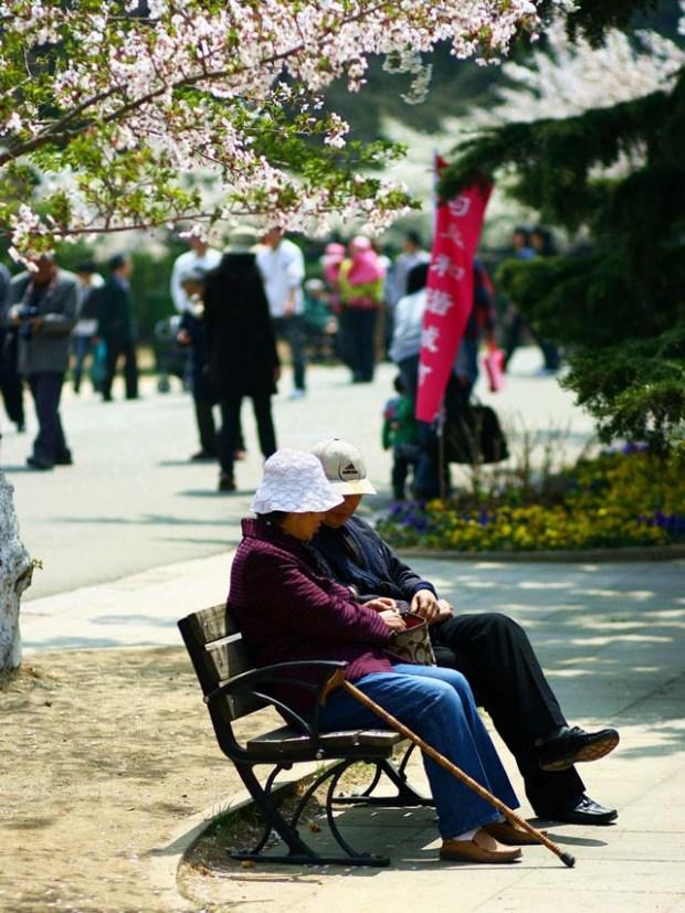 Zhongshan Park Qingdao Bench