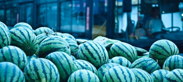 Qingdao Photos Lin Xun Summer 11 Melons