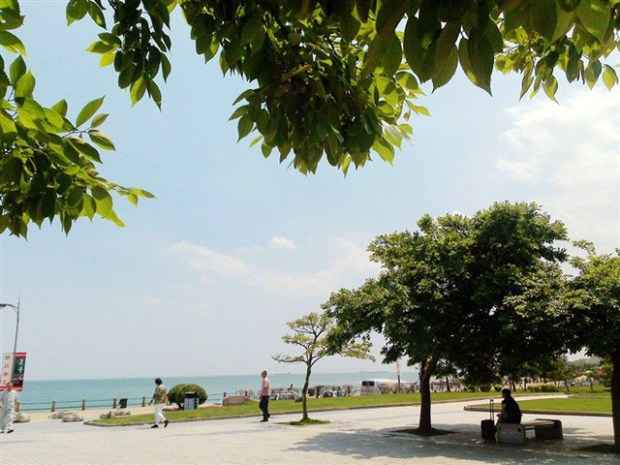 Qingdao Photos Eyes on QD JZ Park