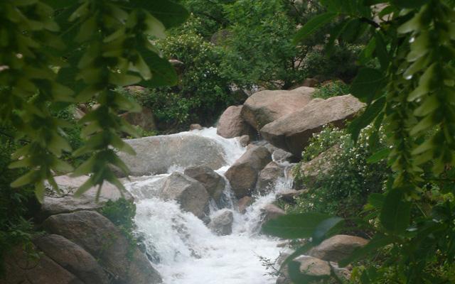 Qingdao Water Season Full Stream