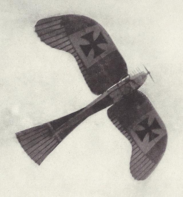 Qingdao Aviator Pluschow Rumpler Taube Underside