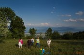 2015-05-29-Qispi-Jura_Leman-Yvoire-St_Cergue-IMG_9475
