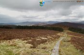 2013-05-16-Wicklow_Way-J2-IMG_1597