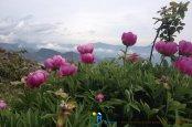 2014-05-11-Gramondo-VTT_Natacha_Regis-06