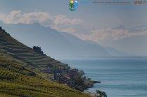2015-05-27-Qispi-Jura_Leman-Lavaux-IMG_9139