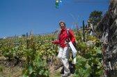 2015-05-27-Qispi-Jura_Leman-Lavaux-IMG_9200