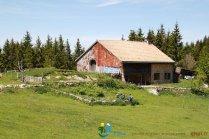 2015-05-28-Qispi-Jura_Leman-Hautes_Combes-IMG_9301