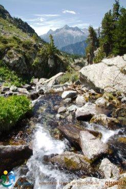 2015-07-13-Qispi-Tour_Viso-Vallanta-IMG_9989