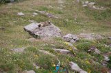 2015-07-13-Qispi-Tour_Viso-Vallanta-JIMG_0030