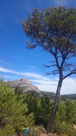 2016-06-11_12-qispi-WE_Ste_Victoire-Photos_Thomas-DSC_0100
