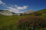 Pause pique-nique au milieu des Rhododendrons – Jour 2 – Tour du Marguareis – Juin 2016 – Trek, Rando, Italie
