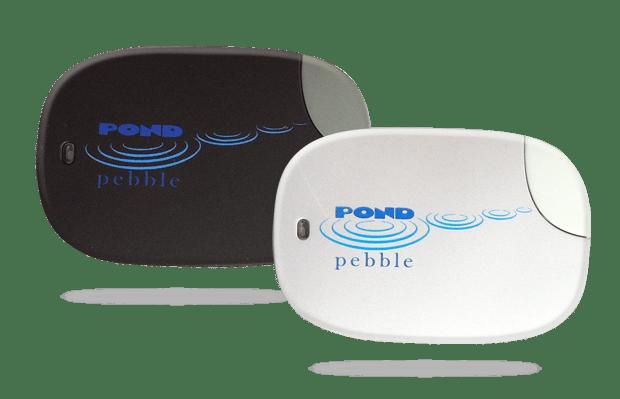 Devant's Pond Pebble