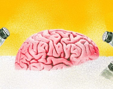 sal dieta cerebro