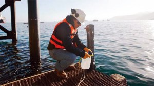 BHP water testing