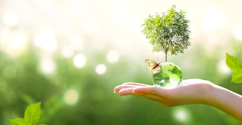 Vulcan Zero Carbon Lithium Hydroxide makes environmental sense