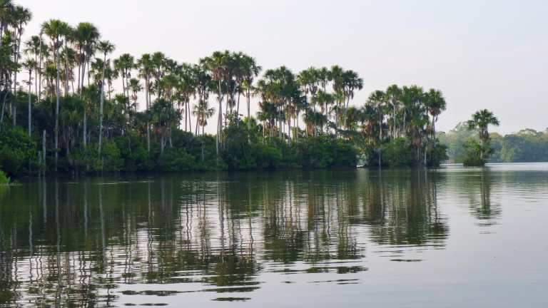QosqoExpeditions - From the Amazon to the Andes