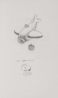 Whale Shark Plane