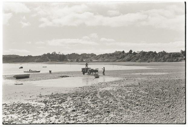 Bahía Manao, Chiloé,1988.