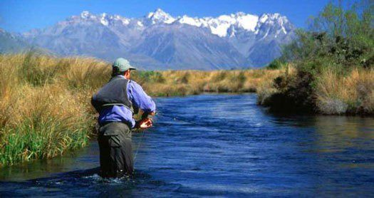 nz-pensioners-fishing