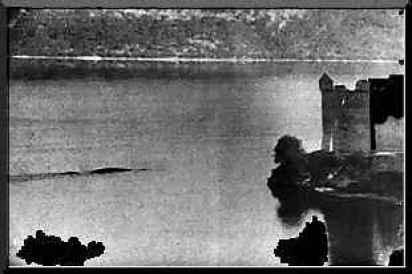 Risultati immagini per macnab loch ness