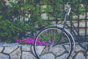 bicycle with a garden backdrop