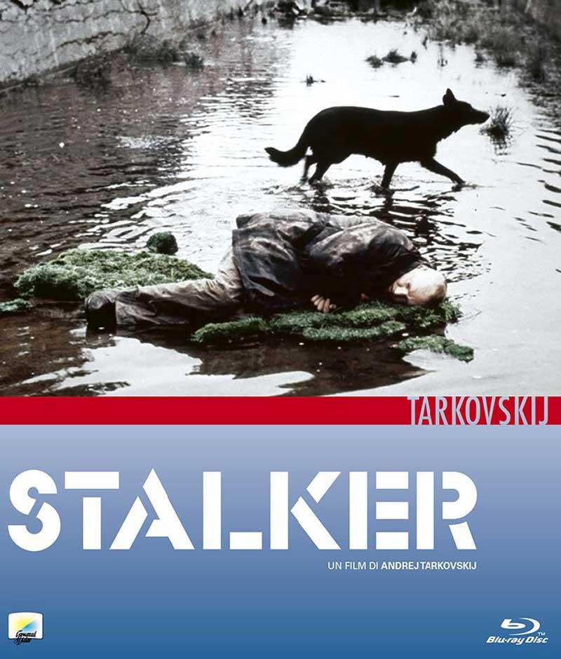 Risultati immagini per Strugackij,