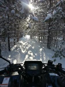 fabien wolf quadiste winter