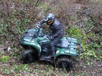 Grizzly450_9