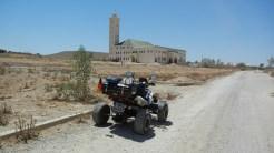 10 Mosche