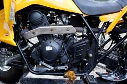 Hätten es fast rausgerissen: Der agile Motor und das gut abgestufte Getriebe können begeistern.