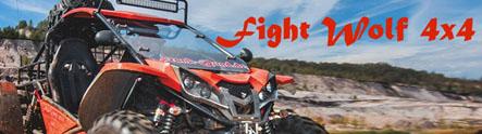 http://www.fightwolf4x4-buggy.de/