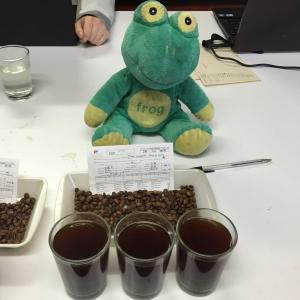 Tasting coffee for quality control and assessment