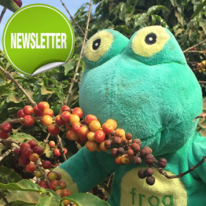 Newsletter May 2019 – Quick update