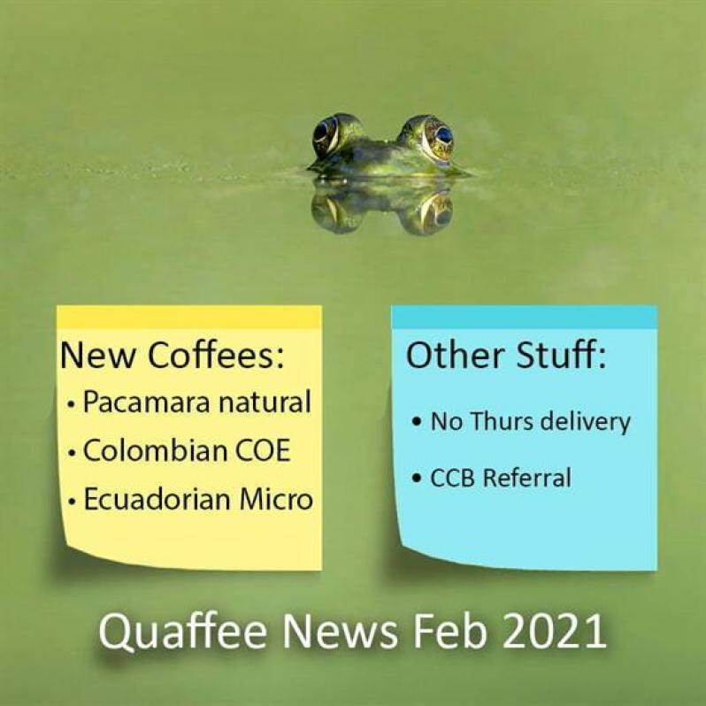 Quaffee Newsletter Feb 2021