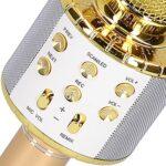 Microphone sans fil, fonction de changement de son micro karaoké pour haut-parleur pour Erformance