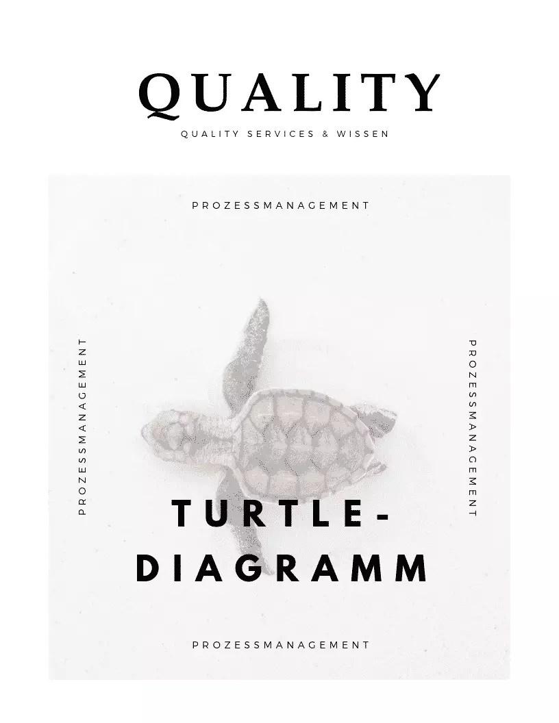 Turtle Diagramm