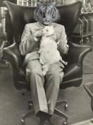 Tiger Blofeld