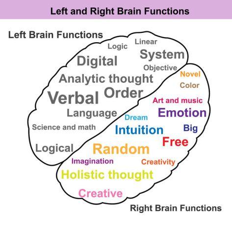 emisferi cerebrali e qualità