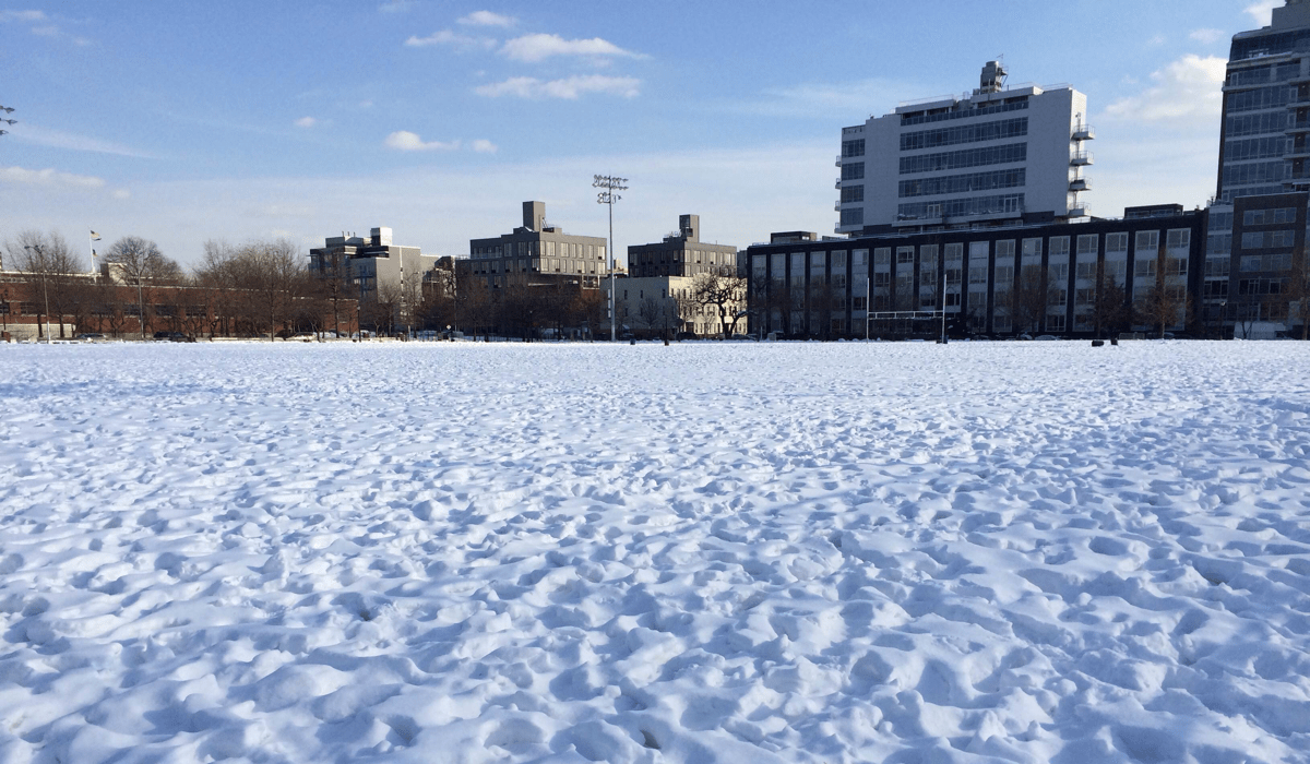 NYC soccer field covered in snow